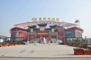 36 mercato delle medicina cinese bozhou